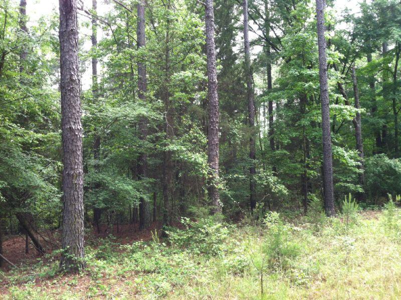 Home Site : Mccormick : McCormick County : South Carolina