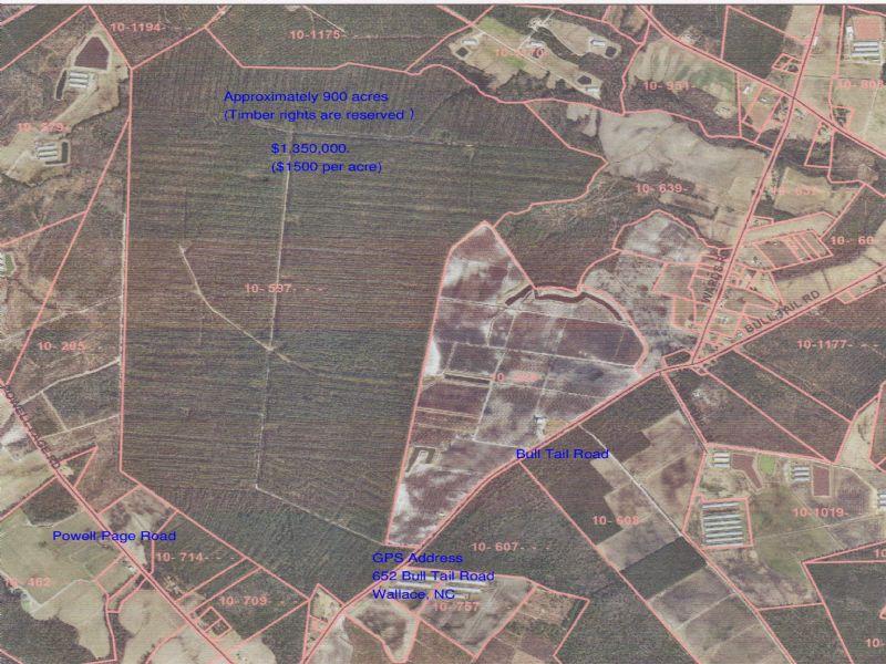 900 Acres : Wallace : Duplin County : North Carolina