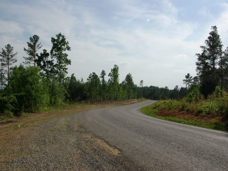 Near Birmingham - Tract 23 Of 28 : Odenville : Saint Clair County : Alabama
