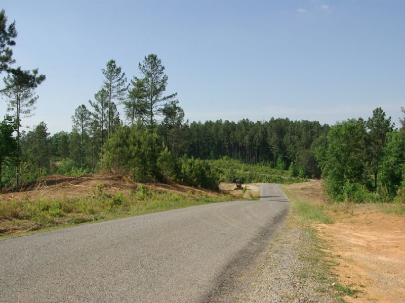 Near Birmingham - Tract 14 Of 28 : Odenville : Saint Clair County : Alabama