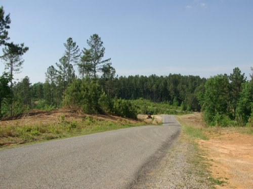 Near Birmingham - Tract 11 Of 28 : Odenville : Saint Clair County : Alabama