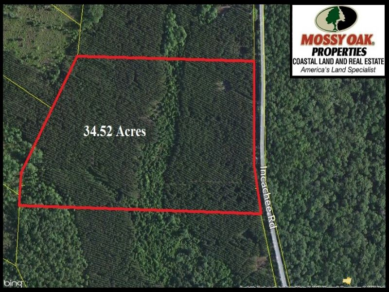 Land For Sale : White Oak : Camden County : Georgia