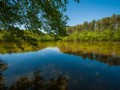 Wimbish Lake Farm in Randolph County, North Carolina
