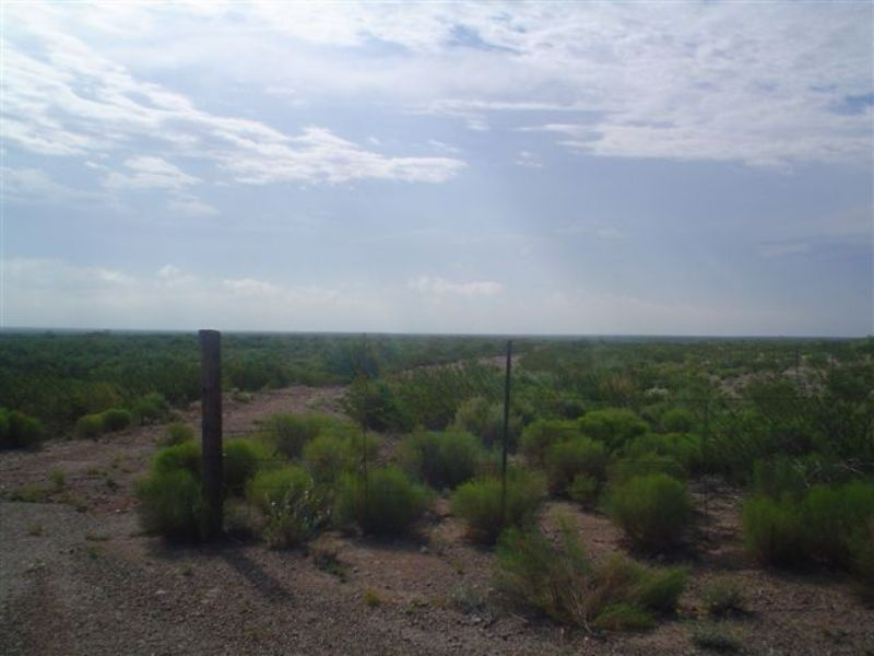 30 Acres. Terms $300/month : Pecos : Reeves County : Texas