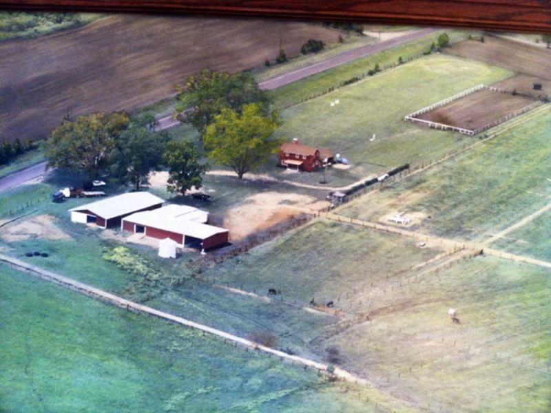 43 Acre Mini Horse And Cattle Farm : Pavo : Thomas County : Georgia