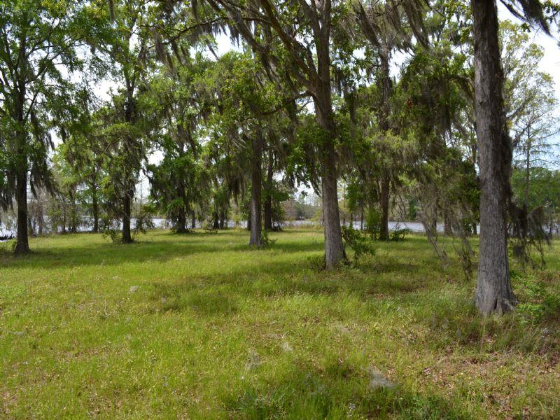 16 Acres On Nantachie Lake : Montgomery : Grant Parish : Louisiana