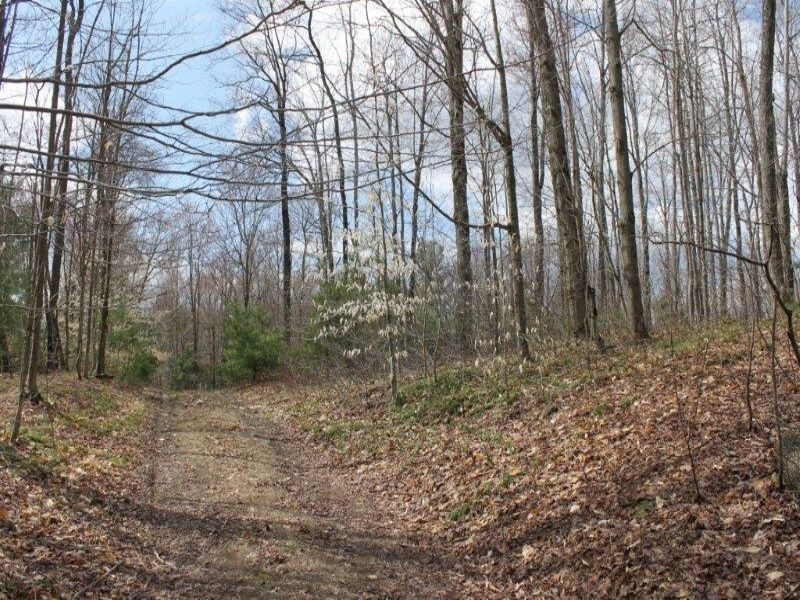 6 Acres Remote Land For Hunting : Amboy : Oswego County : New York