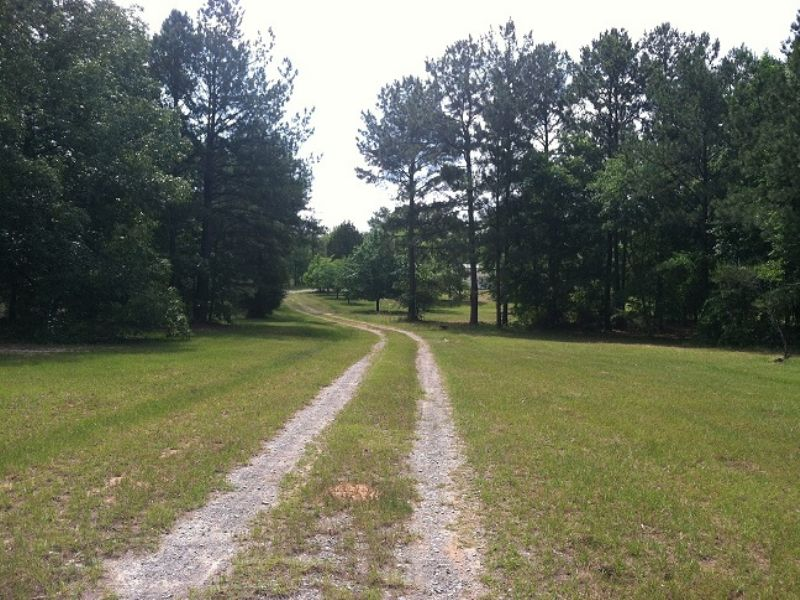 Furnished Home Hunting : Mauk : Taylor County : Georgia