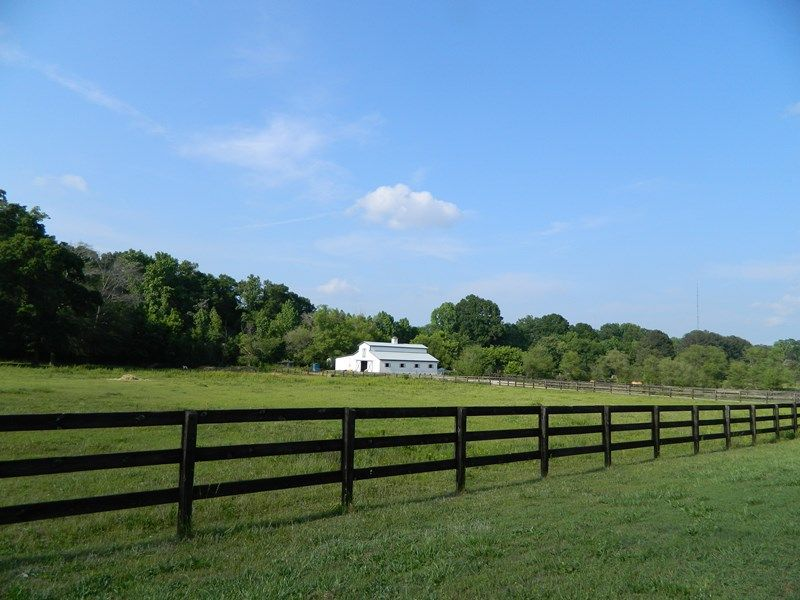 Great Horse Farm Minutes From Uga : Bogart : Clarke County : Georgia