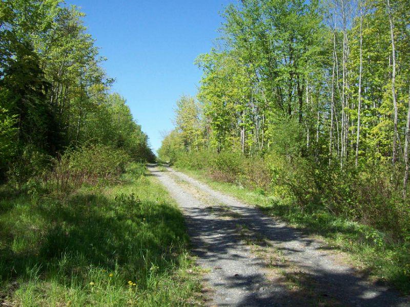 105 Acre Parcel In Monson : Monson : Piscataquis County : Maine