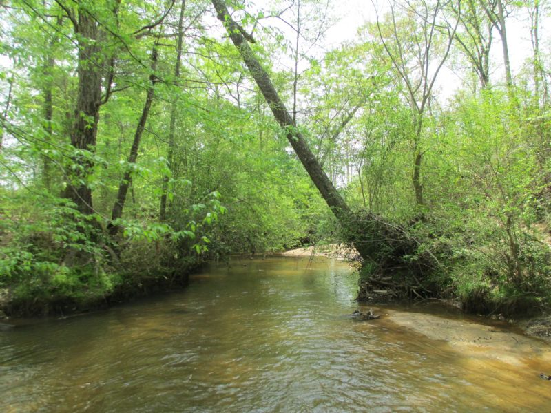 94± Acres On Tobesofkee Creek : Barnesville : Lamar County : Georgia
