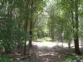 36 Ac Hunting Tract W/ Pond & Cabin