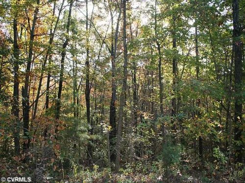 20.06 Acre Lot W/ Timber : Arvonia : Buckingham County : Virginia