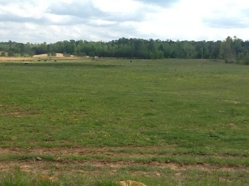 100 Ac Pasture Tract : Brilliant : Marion County : Alabama