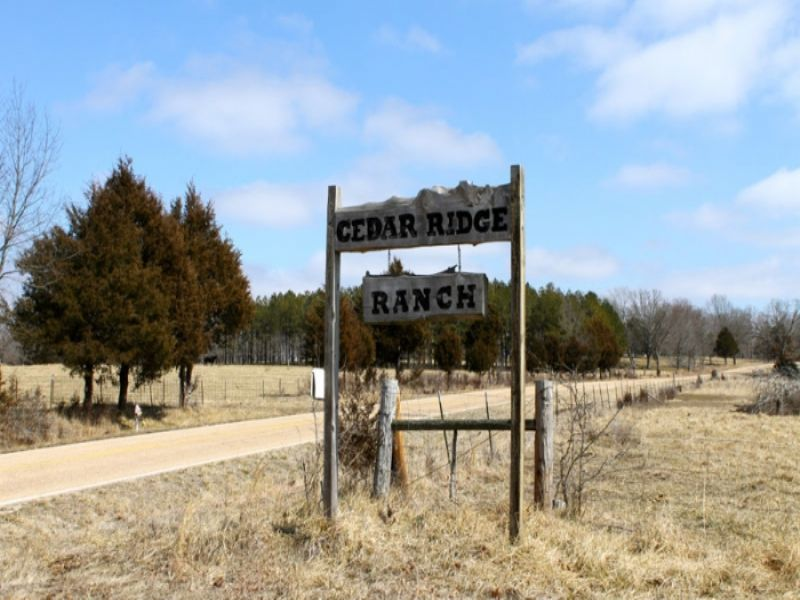 5.1 Acre Cedar Ridge Ranch : Rolla : Phelps County : Missouri
