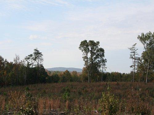 22.84 Acres On Anderson Hwy : Buckingham : Virginia