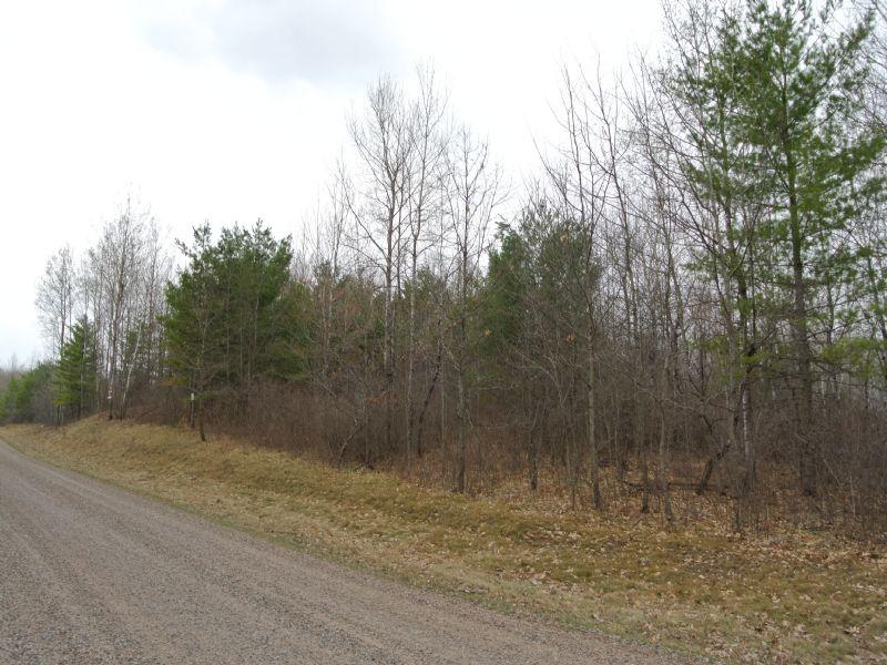 5+ Private Acres In Minocqua : Minocqua : Oneida County : Wisconsin