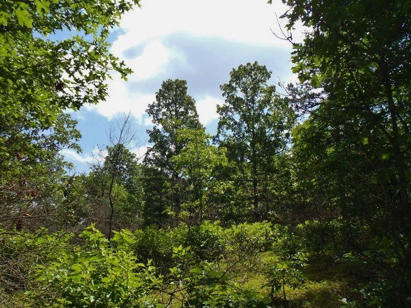 Cloudy Southeast : Rattan : Pushmataha County : Oklahoma