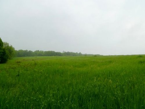 120 Acres - Outstanding Rec Land : Richland Center : Richland County : Wisconsin