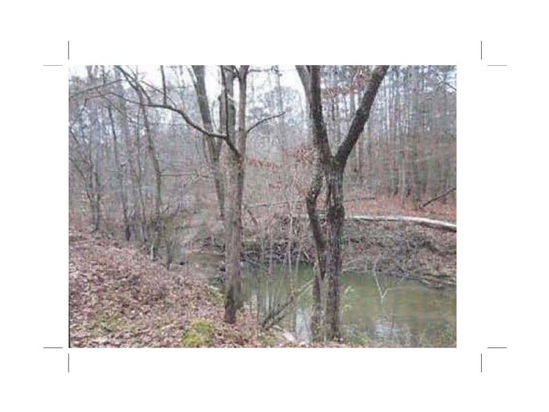 Bank Owned 37 Acres Hunting Tract : Dallas : Paulding County : Georgia