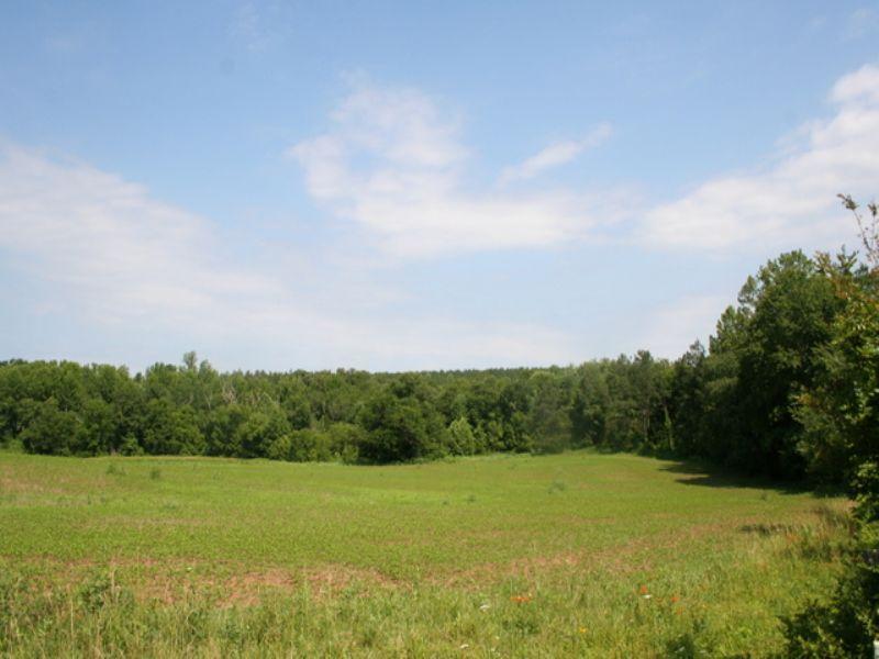 Beautiful 90 Acre Lot : Goochland : Goochland County : Virginia