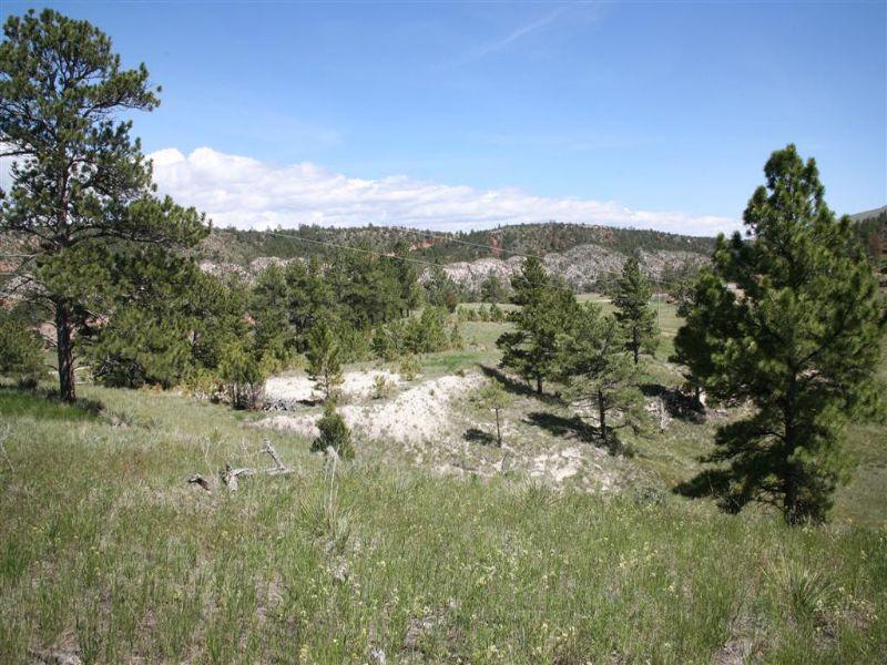 Stowe Acreage : Newcastle : Weston County : Wyoming