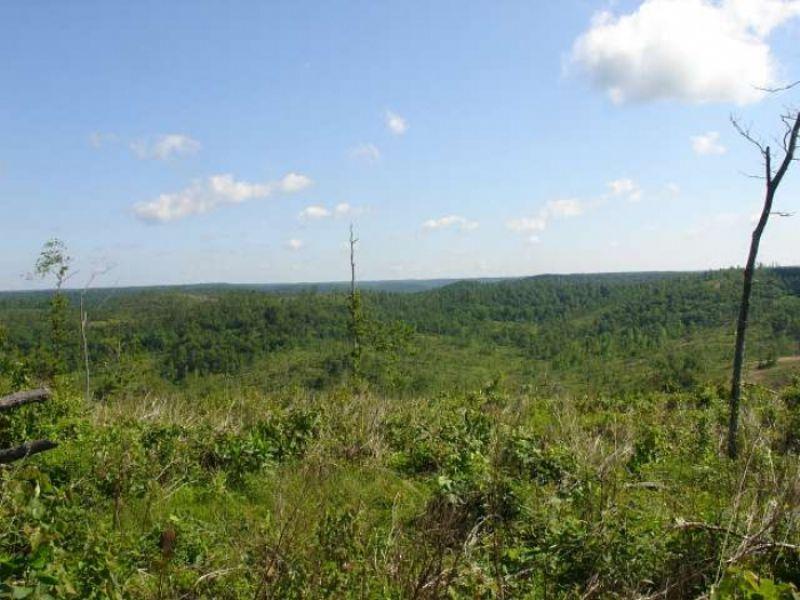 30.01 Acres Antler Ridge : Salem : Shannon County : Missouri