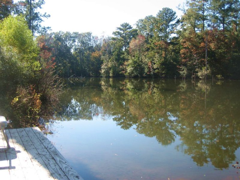 23-001 Yellow River Tract : Andalusia : Covington County : Alabama