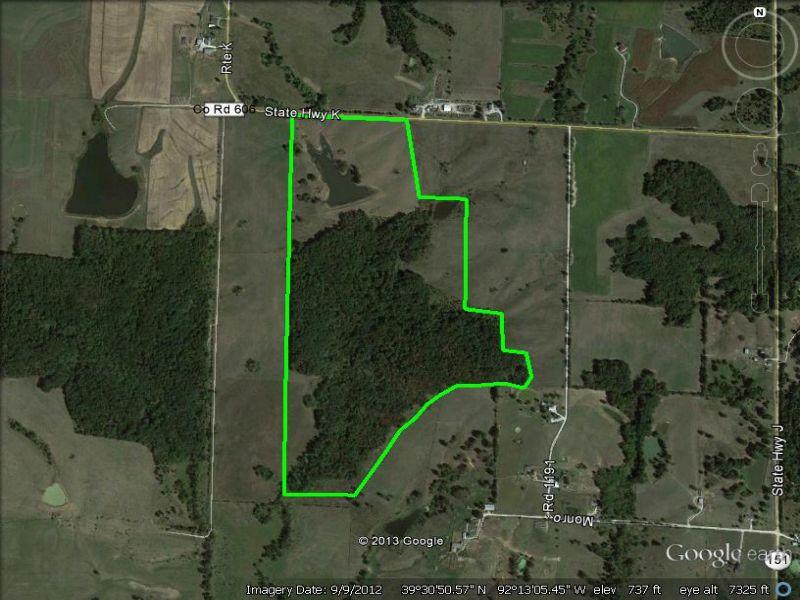 132 Acres Mostly Woods : Madison : Monroe County : Missouri