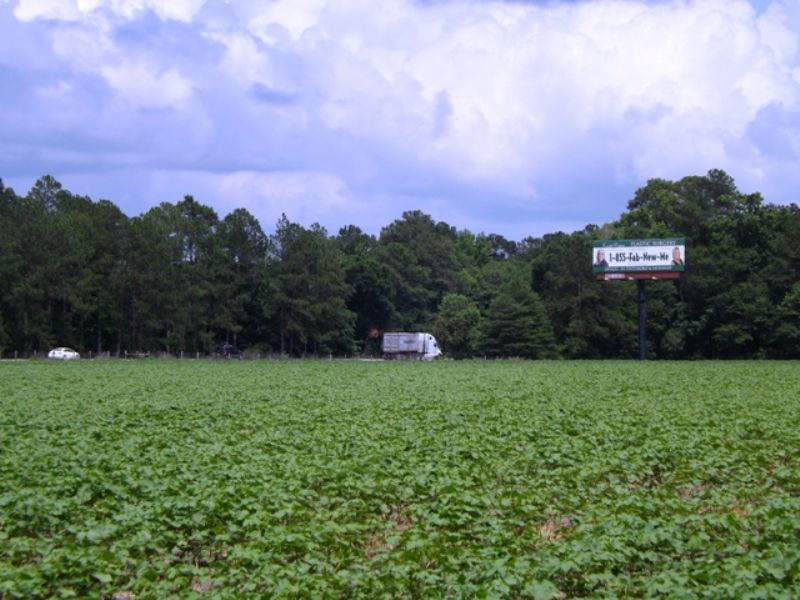 57+/- Acres Commercial I-16 & Hwy67 : Statesboro : Bulloch County : Georgia