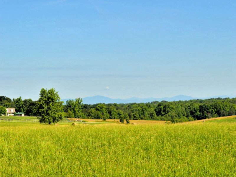 15 Acre Farm With Cooley Springs : Chesnee : Spartanburg County : South Carolina
