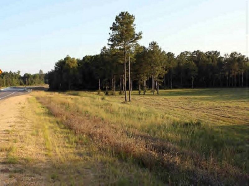Great Homesite W/ Additional Ac. : Columbia : Marion County : Mississippi