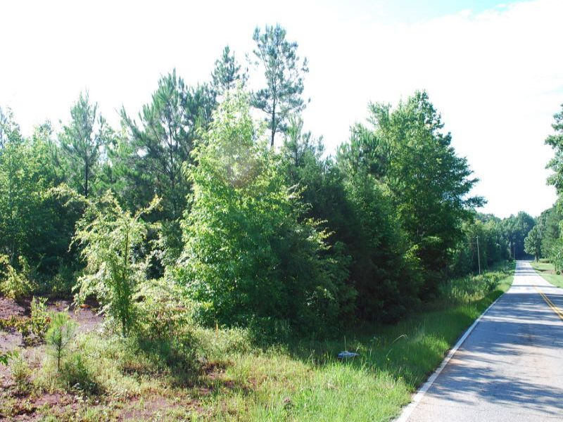 9.5 Acres In Pauline Glenn Springs : Pauline : Spartanburg County : South Carolina