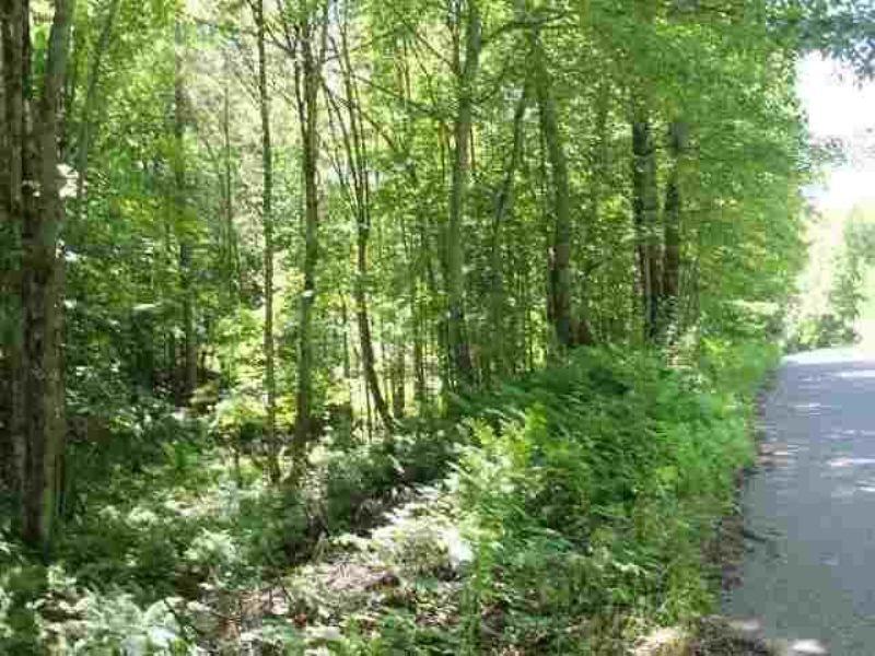 Tbd Chief Lake Road  Mls#1074231 : Republic : Marquette County : Michigan