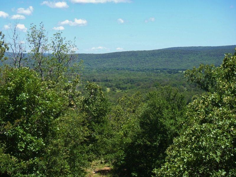 Flagpole Ridge 272 Acres : Clayton : Pushmataha County : Oklahoma
