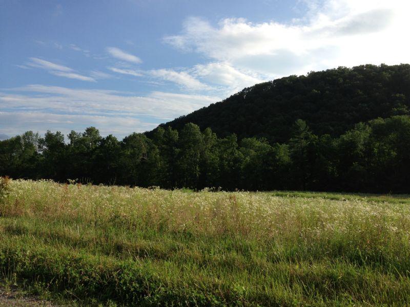 117+/- Acre Farm Real Estate Auctio : Millville : Columbia County : Pennsylvania