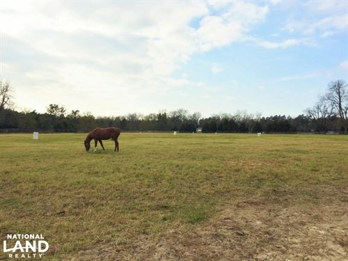 St, Matthews Equestrian Estate : Saint Matthews : Calhoun County : South Carolina