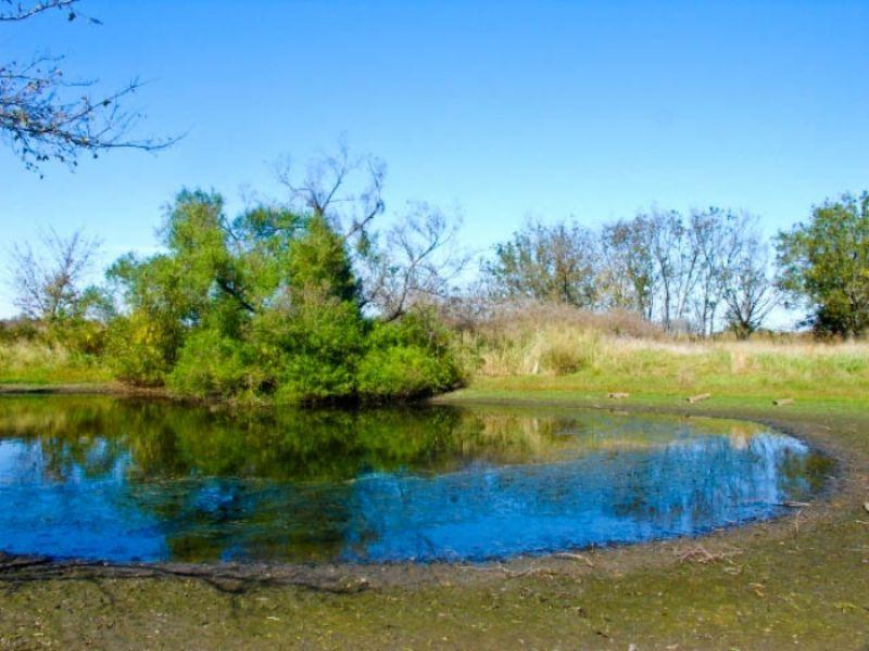 5 Acre Saddlebrook Ranch (pond) : Okemah : Oklahoma County : Oklahoma