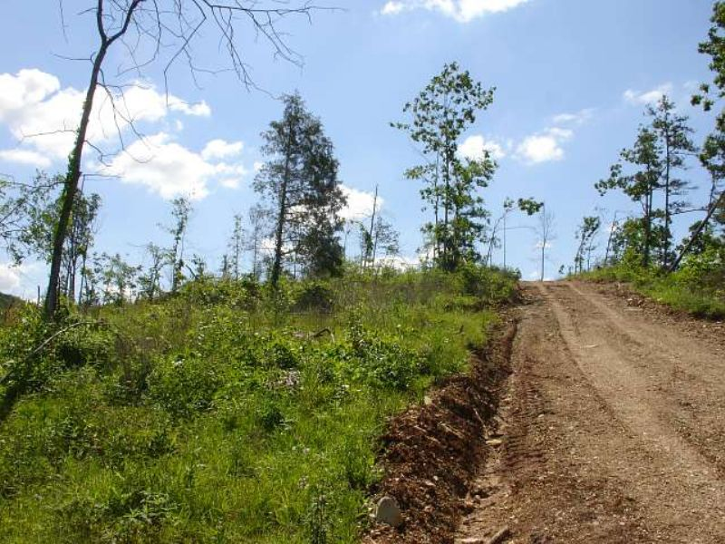 27.68 Acres Antler Ridge : Salem : Shannon County : Missouri