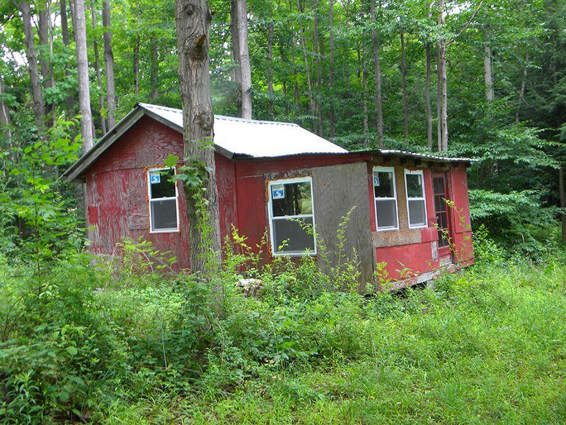 18 Acres Cabin Woods Meadow : Dryden : Tompkins County : New York