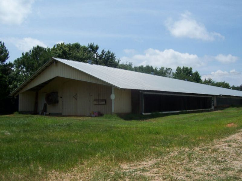 Poultry Farm (broilers) : Homer : Banks County : Georgia