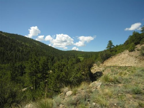Bank Owned Adjoin National Forest : Salida : Chaffee County : Colorado