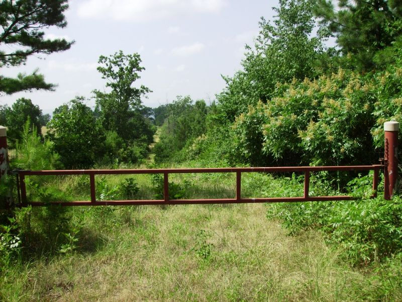40 Acre Hunting / Build A Cabin : Clinton : Van Buren County : Arkansas