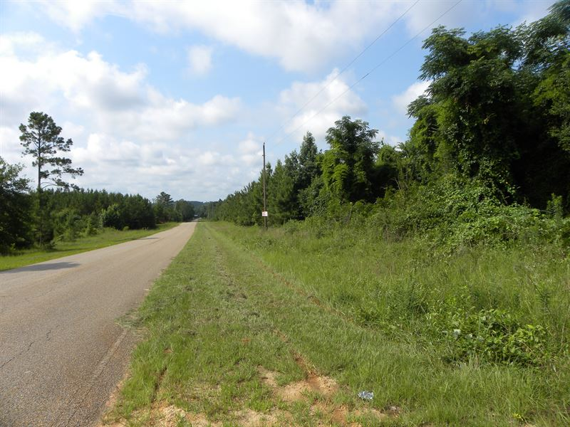 10-010 Airport Road : Greenville : Butler County : Alabama
