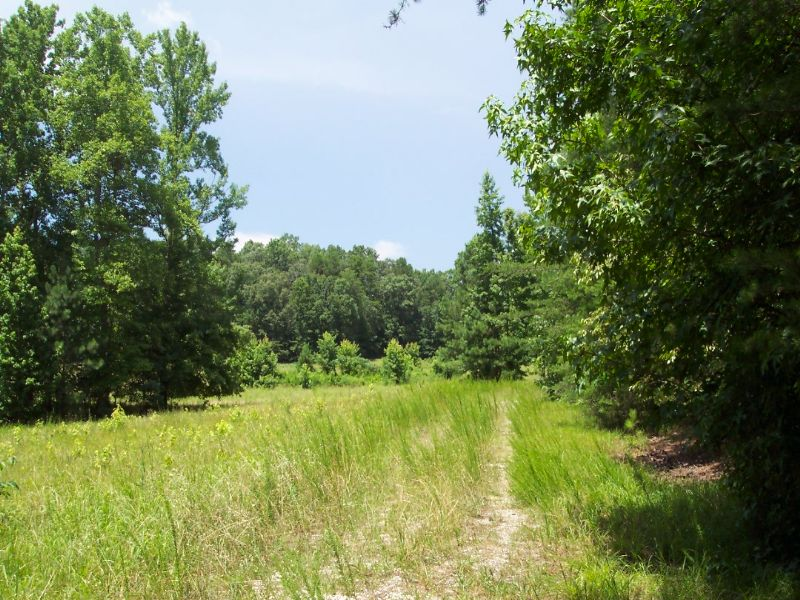 24.968 Acres Pasture, Woods, & Pond : White : Bartow County : Georgia