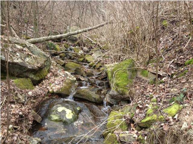 98+/- Acres With Creek : South Pittsburg : Marion County : Tennessee
