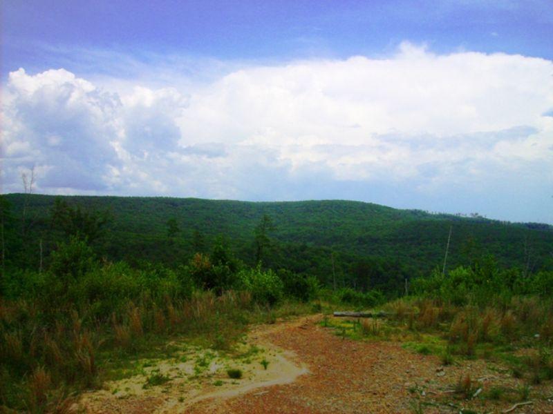 106 Acres With A View : Clinton : Van Buren County : Arkansas