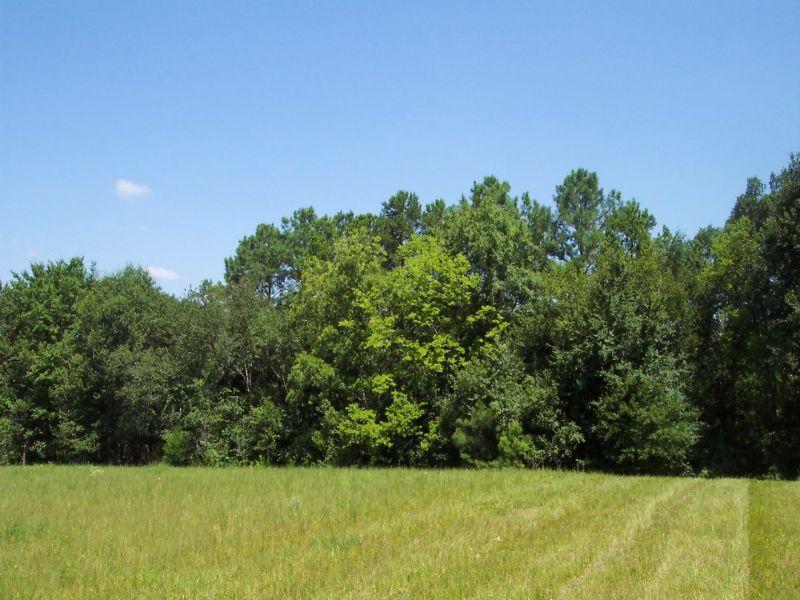 Homesite With Pasture & Timber : Cartersville : Bartow County : Georgia