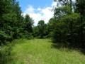 Homesite-hunting- Near Macon