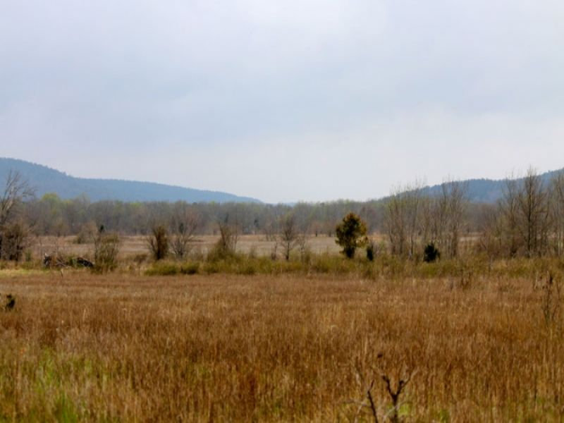 5.16 Acre Daisy Meadows. Terms : Clayton : Pittsburg County : Oklahoma